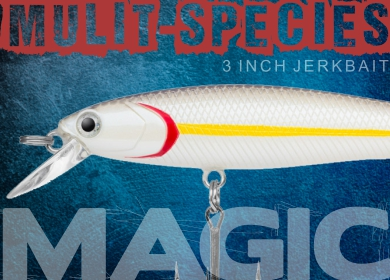 J-Spec Lure Dynamic Lures Multi Species